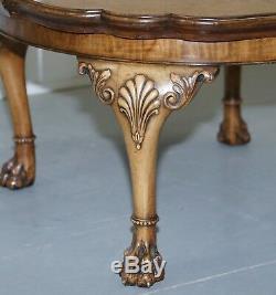 Géorgie Irish Lion Paw Poilu Pied Ronce De Noyer Table Basse Festonnée Garniture Bord